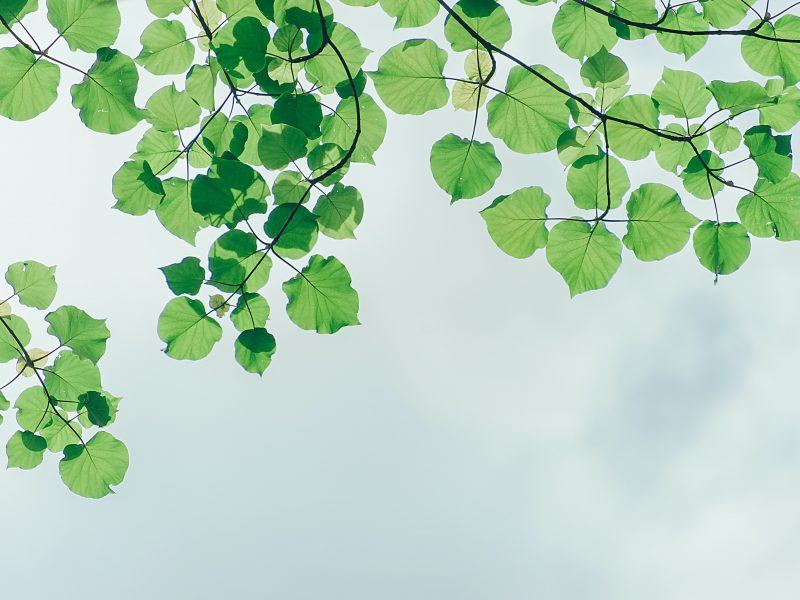 De Duurzame Cloudoplossing – vBoxxCloud
